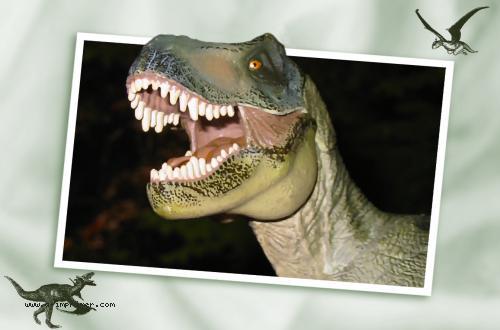 Carte postale d' un tyranosaure sortant de l'image