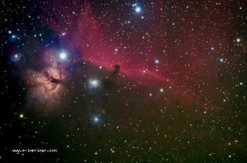 Carte postale de la nébuleuse de la tête de cheval. Astronomie.